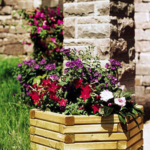 Hexa Planter Set (3 Piece)