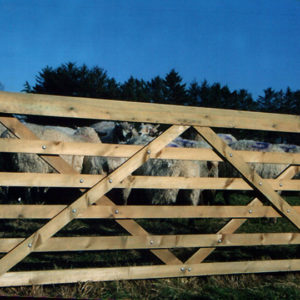 6-Bar Stud Gate