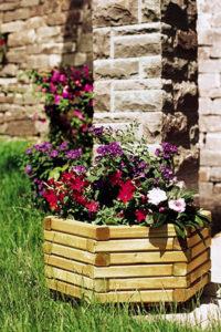 Hexa Planter Set (3 Piece)
