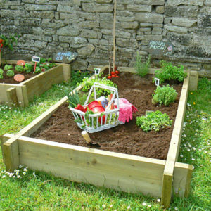 Raised Vegetable Bed (Double)