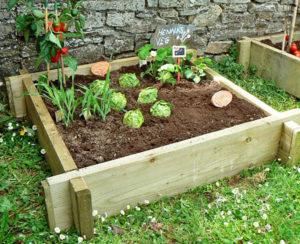Raised Vegetable Bed (Single)
