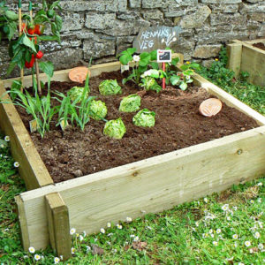Raised Vegetable Bed (Single)