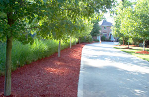Vibrant Red Mulch